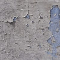 Lead Paint in Apartment Rentals